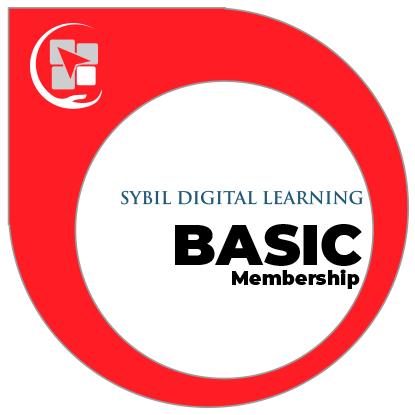 Basic (4-6 students)
